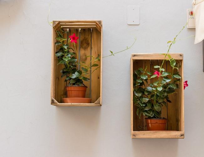 32 02f6 Trang trí nhà đẹp và tràn đầy sức sống với các chậu hoa tươi