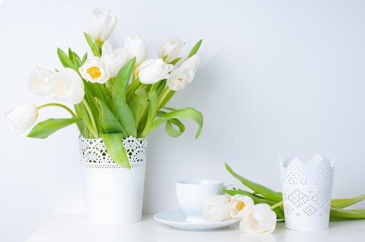 42 c6af Trang trí nhà đẹp và tràn đầy sức sống với các chậu hoa tươi