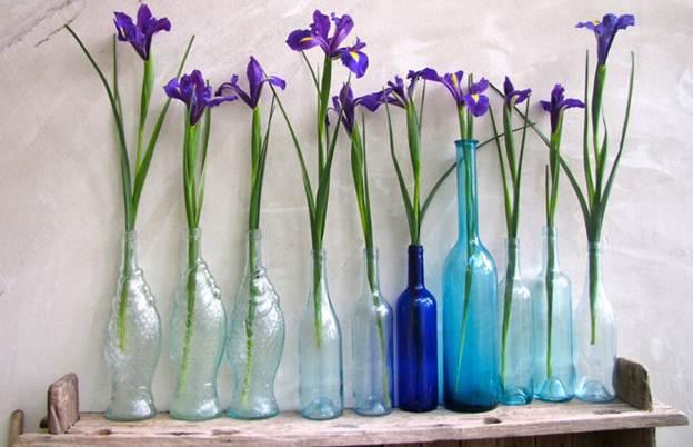 56 e742 Trang trí nhà đẹp và tràn đầy sức sống với các chậu hoa tươi